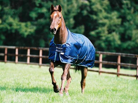 Paardenwinkel Be Bucas Smartex Rain Turnout Soldes